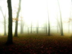 Children Of The Mist (Accretion Point) Tags: park trees light brown white mist black fall leaves misty dark swingset 2on2photooftheday superbmasterpiece 2on2photoofthedayjune2007
