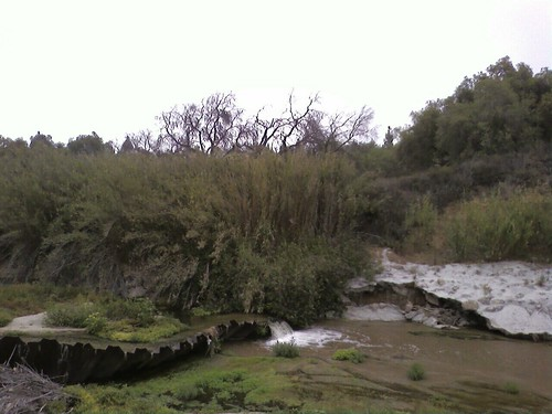 Along the Arroyo