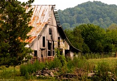 Country Decay (raisinsawdust - (aka: tennphoto)) Tags: barn nikon decay farm southern nikkor ruraldecay aclass dreamjournal blueribbonwinner 50v5f d80 nikond80 anawesomeshot diamondclassphotographer piratetreasure2 piratetreasure3 captainschest1