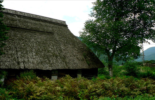 Akiyamago Traditional House