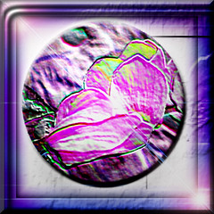 ART NOUVEAU (fantartsy JJ *2013 year of LOVE!*) Tags: pink flowers macro nature beauty photoshop purple fantasy frame collaborative photoart aclass wonderfulworld creativephoto naturesque mywinner abigfave citrit ysplix flickrelite photostosmileabout overtheexcellence perfectphotographer