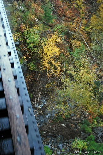 Looking down from the Willey Brook Bridge
