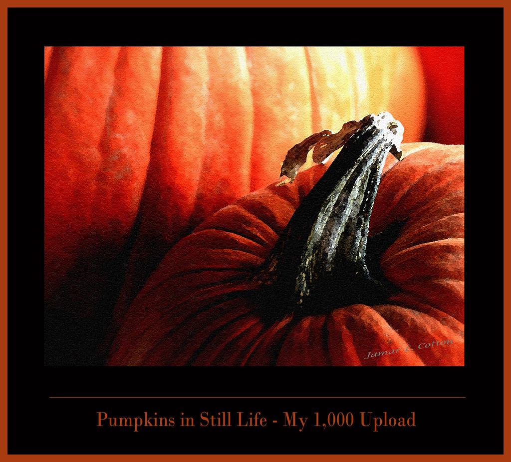 Pumpkins in Still Life - My 1,000 Upload