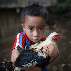 Hug (briyen) Tags: boy portrait eye chicken rural children toy hug philippine thepinnaclehof tphofweek199