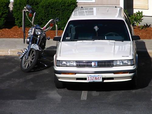 Zebra Lady Car & Cycle