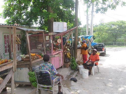 Row of Fruit Stands