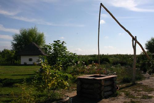 un oasis de verdure