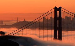 Iconic Fog (A Sutanto) Tags: sf sanfrancisco california ca city morning bridge usa tree fog skyline america plane sunrise buildings am bravo downtown goldengatebridge goldengate coittower baybridge transamerica takeoff soe silhoutte sfbay ggb abigfave superaplus aplusphoto frhwofavs thegoldendreams alemdagqualityonlyclub megatopofthefog goldenvisions enlightedbridge