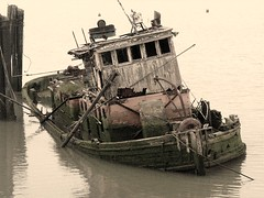 The Wreck of the Edmond Fitzgerald (wolfbayplayer) Tags: oregon shipwreck tugboat rougeriver tz1 2pair wolfbayplayer