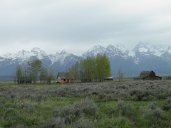 The Grand Teton National Park (Robert Lz) Tags: lz grandtetonnationalpark robertelzey mormonsrow olympussp800uz takenwithanolympussp800uz