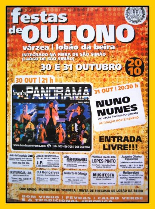 FESTAS DE SÃO SIMÃO 2010