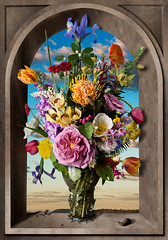 Still Life with Flowers (after Ambrosius Bosschaert) (kevsyd) Tags: niche australianwildflowers ambrosiusbosschaert kevinbest dutchstilllife