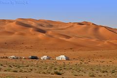 The Desert Dunes - Explore (TARIQ-M) Tags: texture landscape sand desert dunes tent camel riyadh saudiarabia hdr الصحراء canonefs1855 الرياض صحراء خيمة رمال جمل ابل رمل canonef70200mmf4lusm خيام طعوس طعس نياق المملكةالعربيةالسعودية canon400d الرمل ناقة خطوط نفود الرمال كثبان تموجات تموج نفد