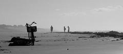 AZEMMOURSEPT060184p (Chris Belsten) Tags: atlantic morocco maroc azemmour coastnorth elhauzia atlanticcoastbarbarybarbary africamaghreb
