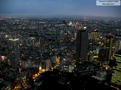 """Tokyo by night from the Tokyo Metropolitan Government Building <a style=""""margin-left:10px; font-size:0.8em;"""" href=""""http://www.flickr.com/photos/24828582@N00/1400971894/"""" target=""""_blank"""">@flickr</a>"""