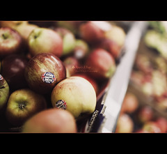 An Apple A Day (Dkillock) Tags: david fruit 35mm canon dof open angle bokeh mark f14 wide wideangle supermarket full ii frame 5d apples usm fullframe gala ef mk mkii markii wideopen llens anappleaday canonef35mmf14lusm nationalappleday killock 5dmarkii 5d2 5dmkii dkillock 21102010 davidkillockphotography