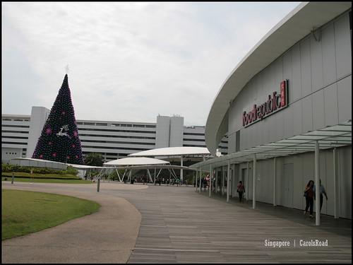 2010-10-31 新加坡  (64)Singapore_30