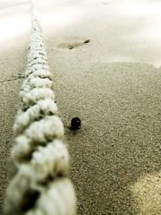 Low (JourneyToNoWhere) Tags: beach lyrics coldplay song weekend may mtv 2007 youtube batuferringhi fujifinepixz1 may2007 20070512outingwithsudhabtferringhi dscf7683