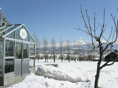 PICT0006富良野-富田農場溫室外觀