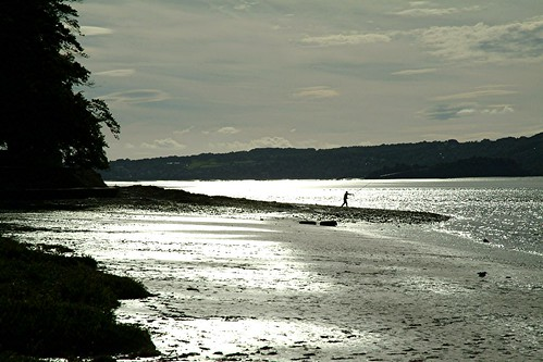 Fishing on Arnside Beach