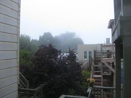 fog_062310