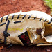 Catchers Glove 2