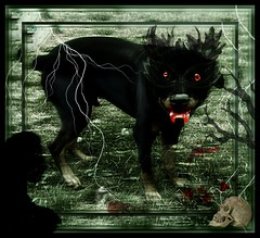 Zeke's Halloween Costume 2010 (FurBabyLuv *Finally back Online) Tags: dog monster photomanipulation dark dayofthedead effects costume scary evil haunted ghosts fangs zeke picnik scull edit cujo 2010 halloweeen picnikhalloween2010