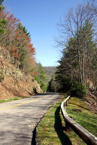 The Road to Cataloochee