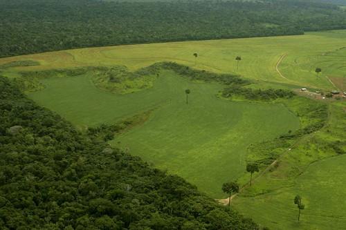 Itaúba, MT, por Leonardo F. Freitas, CC