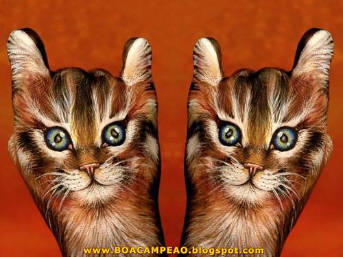 """A imagem """"http://farm2.static.flickr.com/1376/850363396_11fddf3dd2.jpg?v=0"""" contém erros e não pode ser exibida."""