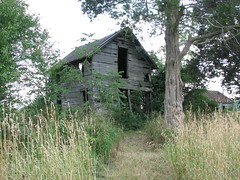 House (Jalebe) Tags: ohio house abandoned overgrown rural decay farm rustic grand rapids