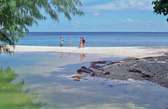 Crossing the white sand (Jonathan Palfrey) Tags: beach landscape photo negative seychelles photomatix mah sesel exposurefusion topazdenoise