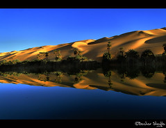 (Bashar Shglila) Tags: lake reflection sahara water reflections palms landscape landscapes interesting sand with desert dunes sony salt dream taken palm oasis salty libya umm  ly maa     saharan  thegalaxy    awbari almaa   dschx1 magicunicornverybest mygearandmepremium mygearandmebronze mygearandmesilver mygearandmegold mygearandmeplatinum mygearandmediamond tplringexcellence potd:country=menaar