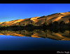 وَاحَة و بِحُيْرَة أَم الْمَاء (Bashar Shglila) Tags: lake reflection sahara water reflections palms landscape landscapes interesting sand with desert dunes sony salt dream taken palm oasis salty libya umm ام ly maa بحيرة الحياة صحراء وادي saharan الماء thegalaxy ليبيا واحة نخيل awbari almaa اوباري البحيرات dschx1 magicunicornverybest mygearandmepremium mygearandmebronze mygearandmesilver mygearandmegold mygearandmeplatinum mygearandmediamond tplringexcellence potd:country=menaar