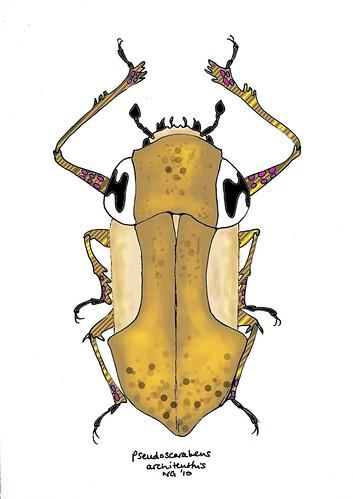 pseudoscarabeus (sketch)