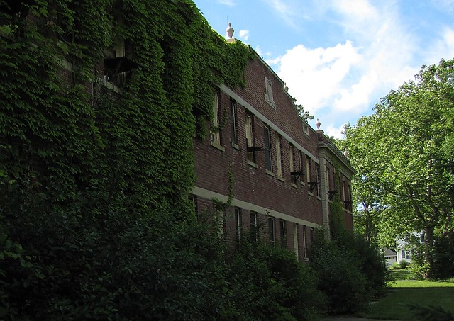 Building 7, Slowly Claimed by Ivy