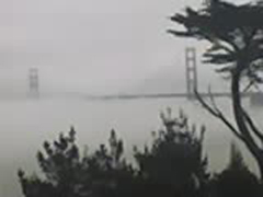 fog_06032007_03