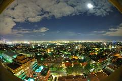 Fisheye Sydney by night