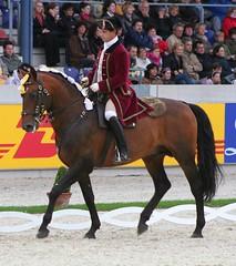 Escola Portuguesa D'Arte Equestre Quadrille (neulands) Tags: horses caballo cheval aachen pferde alterreal chio07