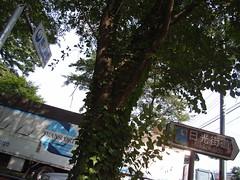 日光街道 (2)