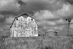 WildFlowers B&W (FotoEdge) Tags: flowers summer bw home windmill clouds barn blackwhite midwest farm harvest silo missouri weathered homestead wildflowers aged prairie infared greenacres fotoedge