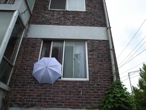 Umbrella-ed window