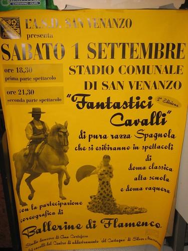 San Venanzo Horse Show_0009