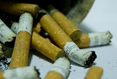 estrs (bachmont) Tags: cigarette smoke cancer smoking marlboro ash marca ashtray brand fumar tobacco stub colillas tabaco stubs smoked sigarette cigarros cenera cncer fumado colilla cigarrettesbrand marcadetabaco