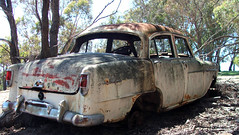 Just Holden Together (Rossco ( Behind The Seen Australia )) Tags: car fb rusted fc holden nswaustralia newsouthwalesaustralia hillendnswaustralia imagefocus imagefocusaustralia rossbeckley