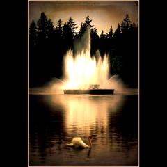 leaving the Lagoon . . . (dragonflydreams88) Tags: memoriesbook