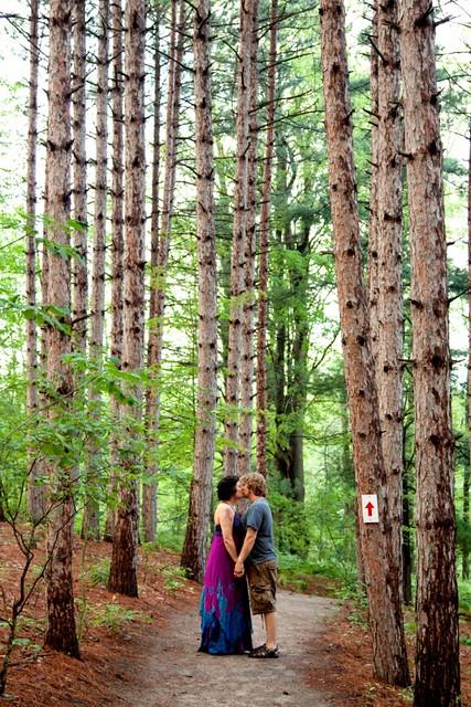 Tall Tall Trees