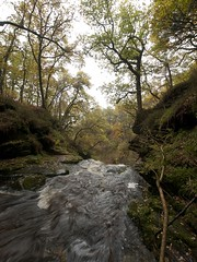 The Black Spout, Pitlochry, Perthshire. (Gordon Haws) Tags: autumn trees scotland highlands perthshire pitlochry theblackspout