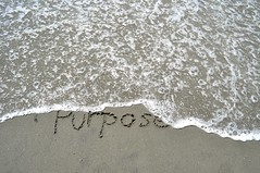 Purpose in the sand (Refocus Photography) Tags: ocean shells beach water writing outdoors sand rocks background wave foam write written purpose