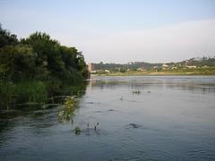 Flores en el rio (Las fotos del Sama) Tags: el paseo un mio por